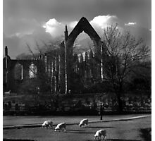 rufford abbey,nottinghamshire,near sherwood forest Photographic Print
