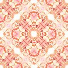 Rose wallpaper by Ginny Schmidt