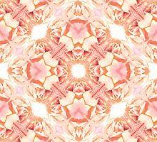 Rose wallpaper by Ginny Schmidt