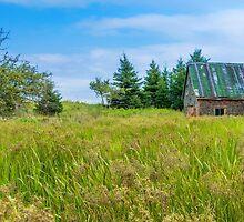 Abandoned House in Feltzen South by kenmo