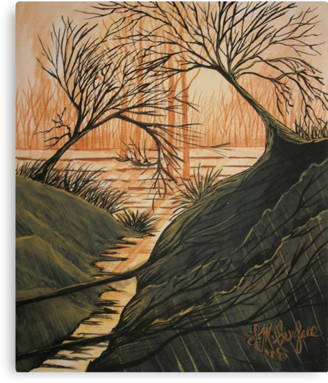 Brush Fire Brook by linmarie