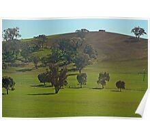 Around Cowra NSW. Poster