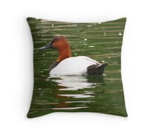Canvasback ~ Male Throw Pillow