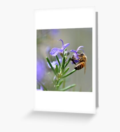 Bee in the Lavender Greeting Card