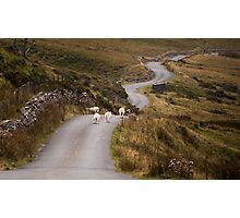 Welsh mountain road Photographic Print