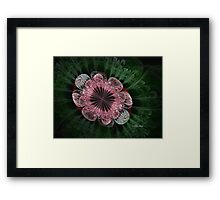 Lace Infusion Framed Print