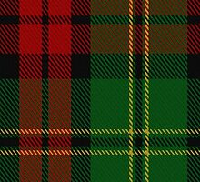 00546 Blackstock Hunting Clan/Family Tartan  by Detnecs2013