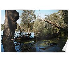 Return - Swamp at Young Rd, Torrumbarry Poster