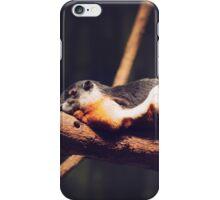 Squirrel Resting iPhone Case/Skin