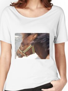 The head of a brown horse in a profile closeup Women's Relaxed Fit T-Shirt