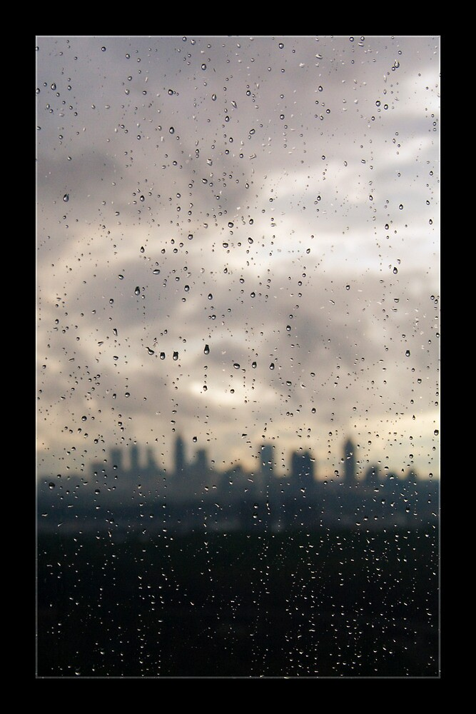The Rain by Matthew Kocin