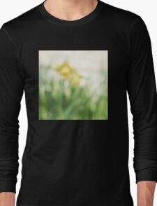 Soft daffodils Long Sleeve T-Shirt