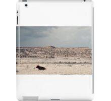 Desert Plains... iPad Case/Skin