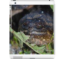Snapping Turtle iPad Case/Skin