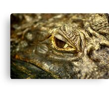 it's all a load of croc. Canvas Print