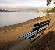 Bench View Pauatahanui Inlet by Barbara Caffell