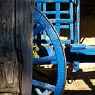 Cart Wheel by Laurence Manly