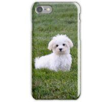 Adorable iPhone Case/Skin