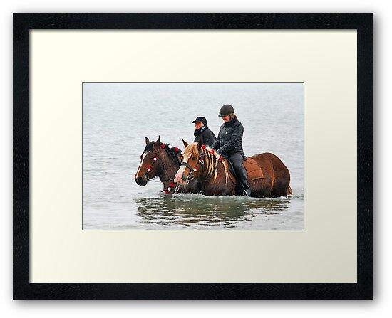 Wet horse legs..... by Adri  Padmos