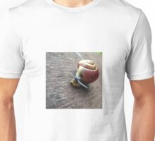 Snail on the gardenseat T-Shirt