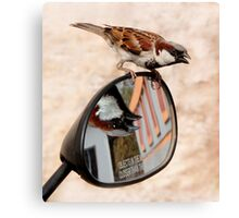 Bird on a Mirror Canvas Print