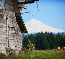 Barn & Mount Hood by Robin  Koster