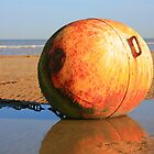 Dymchurch Buoy by Liz Garnett