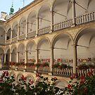 Italian Courtyard by Elena Skvortsova
