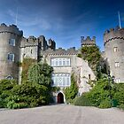 Malahide Castle by Nicholas Jermy