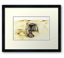 Desert Meditation Framed Print