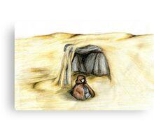Desert Meditation Canvas Print