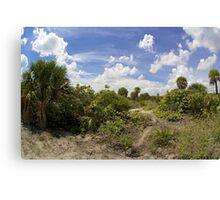 Barrier Island Ecosystem Canvas Print