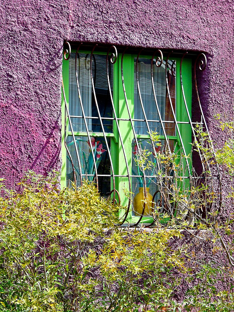 Lime and magenta by Linda Sparks