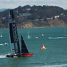 """""""USA Wins the America's Cup"""" by DonnaMoore"""
