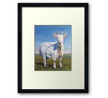 It's Just Me - Quirky Painting of a White Goat Framed Print