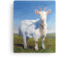 It's Just Me - Quirky Painting of a White Goat Canvas Print