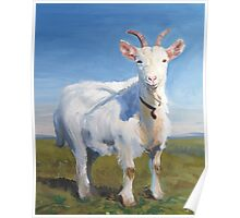It's Just Me - Quirky Painting of a White Goat Poster