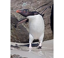 Happy Feet! Photographic Print