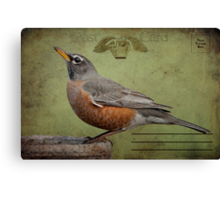 Vintage Robin Postcard Canvas Print