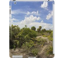 Barrier Island Ecosystem iPad Case/Skin