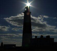 Portland Bill - lighthouse by Matt Stonier