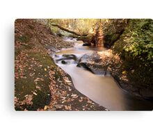 DEAN BROOK CASCADES 2 Canvas Print