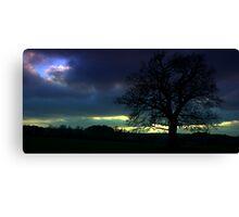 Oak in Silhouette Canvas Print