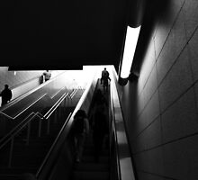Going up by raphael aretakis