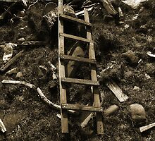 Jacob's Ladder? by sarnia2