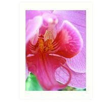 Alien Orchid v.1 Art Print