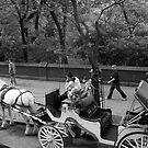 Horse & Carriage at Central Park South, NY by RonnieGinnever