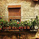 Spanish Garden by Rachelo
