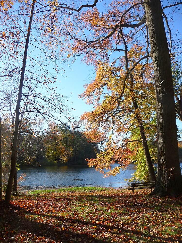 Come sit with me beside Greenbelt Lake 2 by nealbarnett