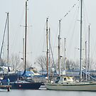 Masts by Stephen Frost